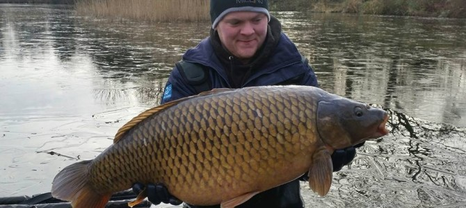 A stunning Common added